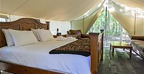 Glamping tent and bed